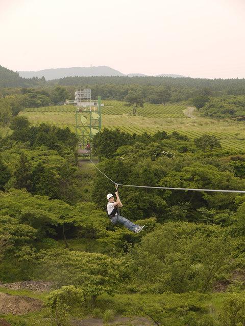 【濟州島-中部】茶喜然綠茶博物館+Zip Line高空滑索初體驗+洞窟咖啡廳 ( 金賢重 也來玩~)!