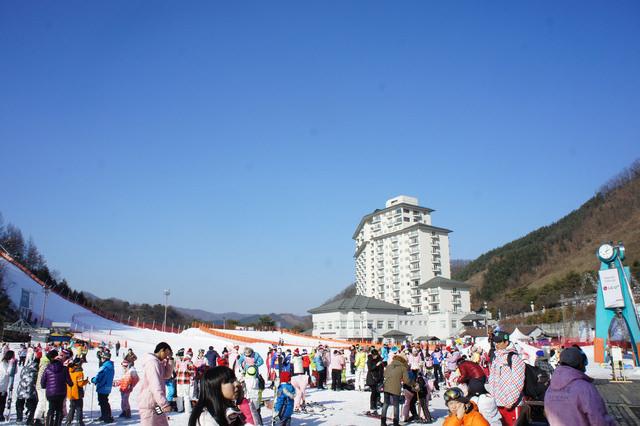 【白楊里站】去韓國滑雪超簡單!! Elysian伊利希安江村滑雪場엘리시안강촌 (今年冬天來趟滑雪之旅吧)