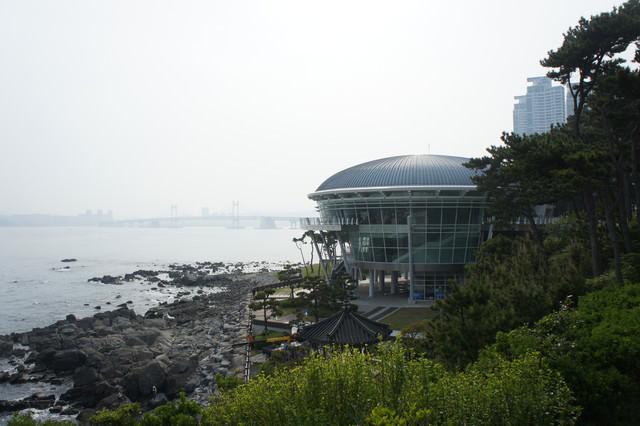 【釜山-冬柏站】一覽釜山絕美麗景緻的 冬柏島(山茶花島) & 極具政治意義的 APEC世峰樓